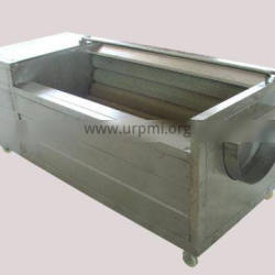 With Sprinkling Device Brush Principle Fruit Vegetable Washer Machine