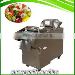 Stainless steel celery and leek cutter new design vegetable cutting machine for sale