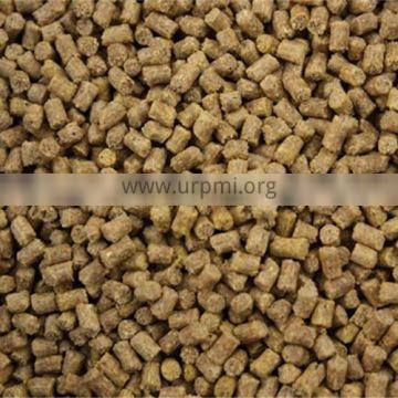 Wholesale pullet feed pellet mill production line