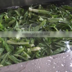 Factory price cucumber pickled vegetable washing machine for sale