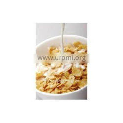 Instant breakfast cereal/corn flakes snack food machine/ production line