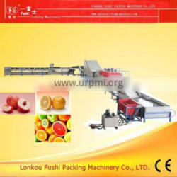 Good QualityFruits Cleaning Drying Waxing machine
