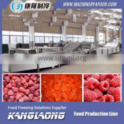 Hot Sale frozen french fries production