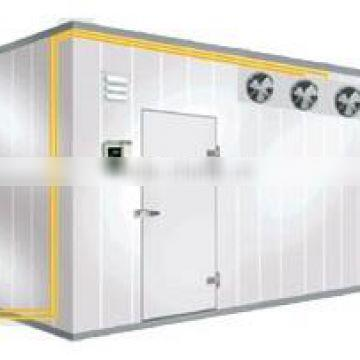 Used Cold Room/Fruit Cold Room/Cold Room Refrigerator Freezer (SY-CR12R SUNRRY)