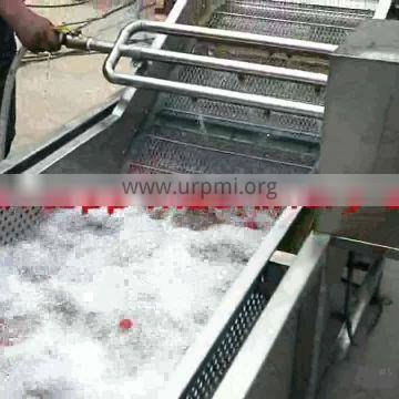 favorable price commercial fruit and vegetable washing and drying machine