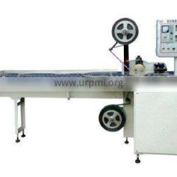 Abnormal Lollipop packing Machine