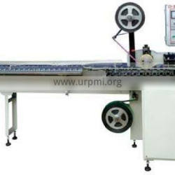 CY-300 Irregular-shaped Lollipop packing Machine