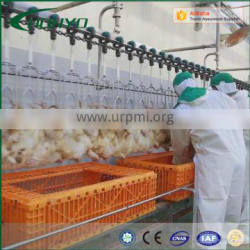 Halal Stainless Steel Poultry Abattoir and Slaughterhouse Machines and Equipment