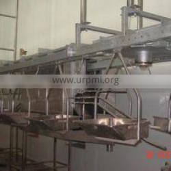 ostrich Slaughter and processing line