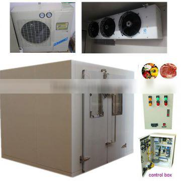 high quality walk-in cold storage room for food/ freezer room