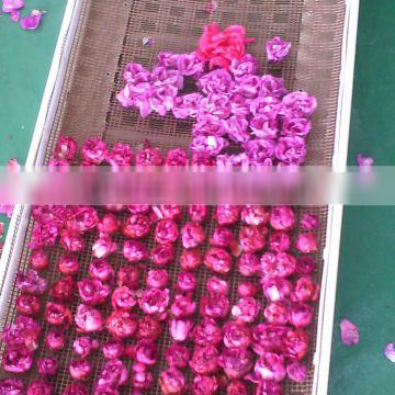 Microwave Vacuum Drying Machine for rose petals