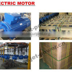 three phase electric motor MS IE2