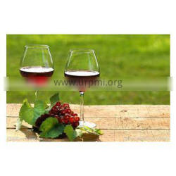 Best seller!! fruit wine equipment with German technology