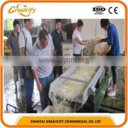 world famous commercial bean sprout cleaning machine