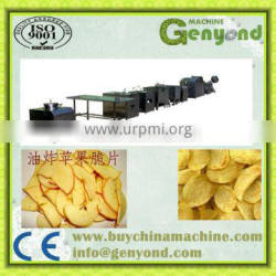 fruit chips machine for fruit processing