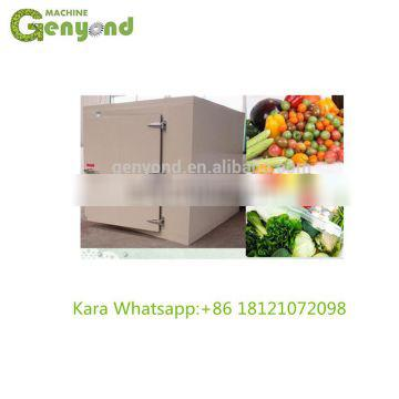 Fruit cold storage with bitzer compressor unit and pu panel for sale